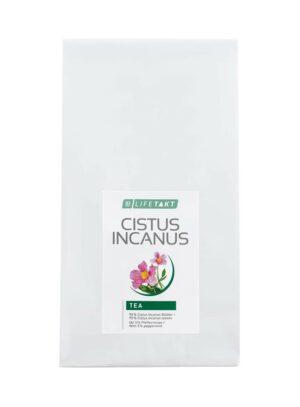 Cistus Incanus The